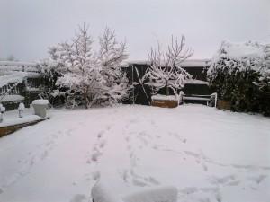January 18th 2013